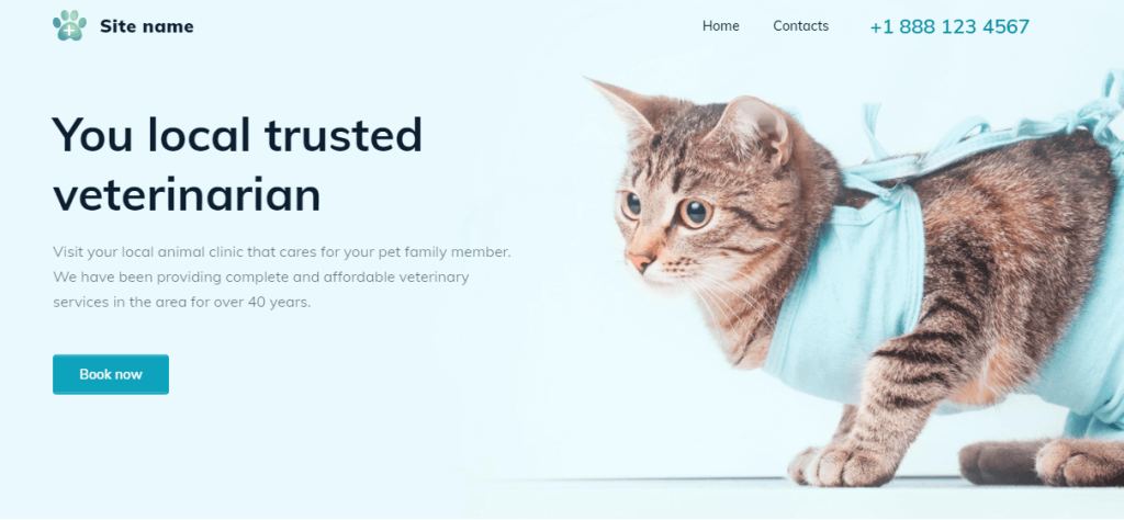Astoria is one of the best Website Builder's theme for health sites